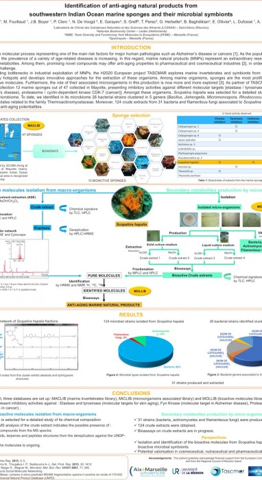 Identification of anti-aging natural products from southwestern Indian Ocean marine sponges and their microbial symbionts