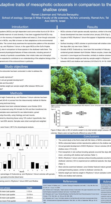 Adaptive traits of mesophotic octocorals in comparison to the shallow ones